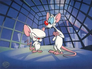 pinky-and-the-brain