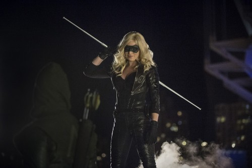 Arrow Canary The Calm