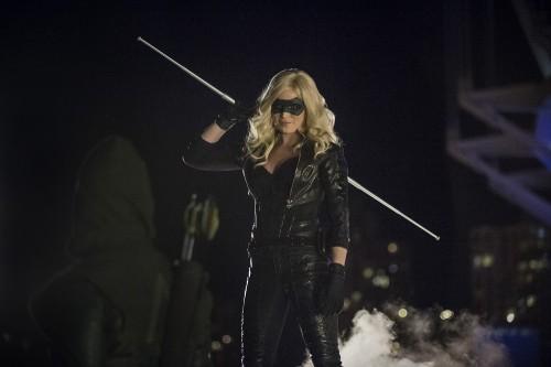 Arrow Canary The Calm