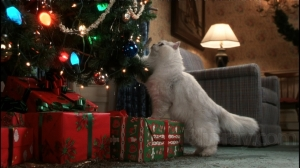 Christmas-Vacation-Fried-Cat
